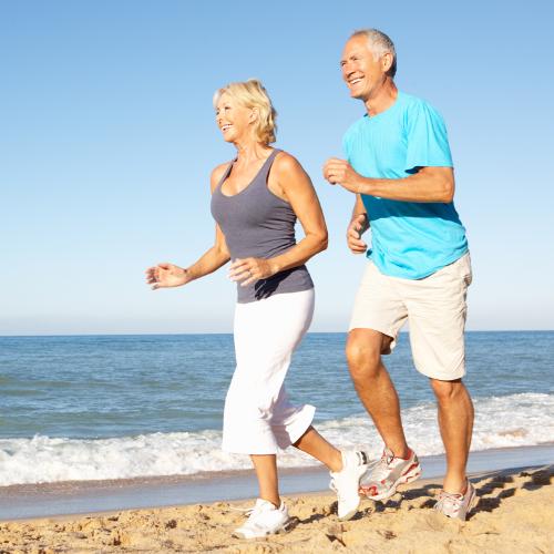 Forschung | Die Botenstoffe der Muskeln