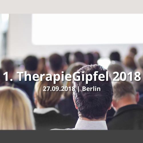 SHV | 1. Therapiegipfel in Berlin: Signale setzen, Weichen stellen und Dialog verstärken!