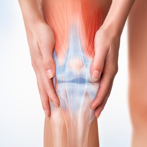 Therapie | Sport nach Knie- und  Hüftendoprothetik