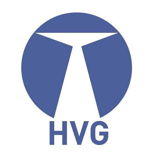 Stellungnahme des Hochschulverbunds Gesundheitsfachberufe zum BMG-Bericht