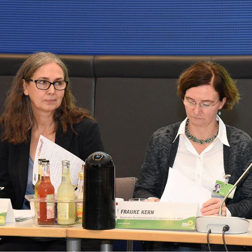 SHV | Spitzenverband vertritt die Therapieberufe bei Stakeholdergesprächen der Grünen